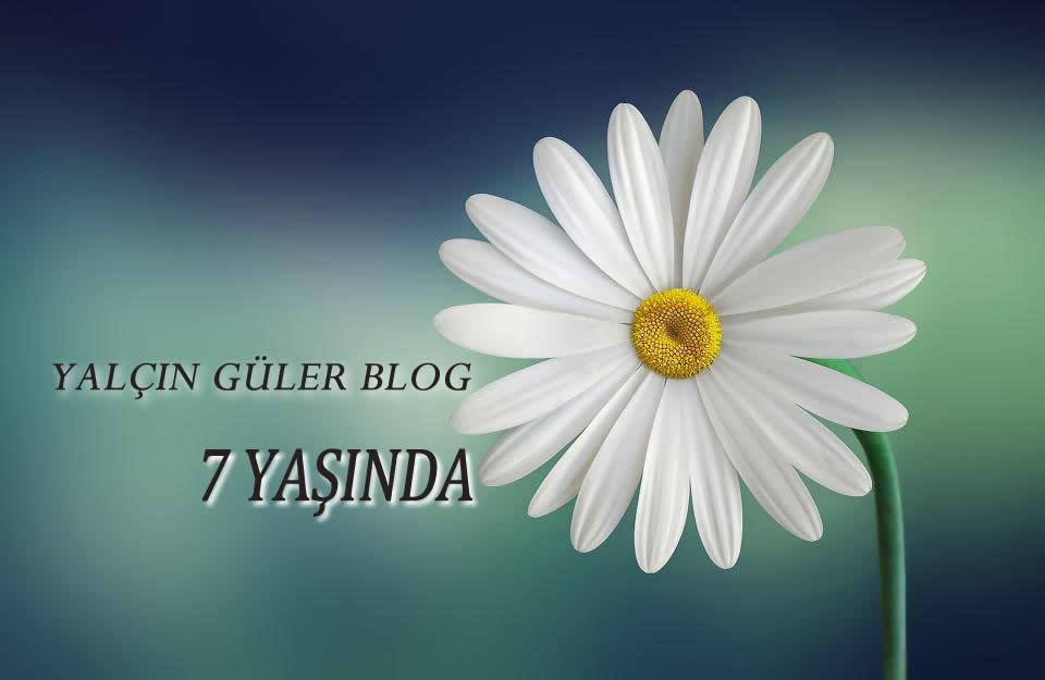 Yalçın Güler Blog 7 Yaşında